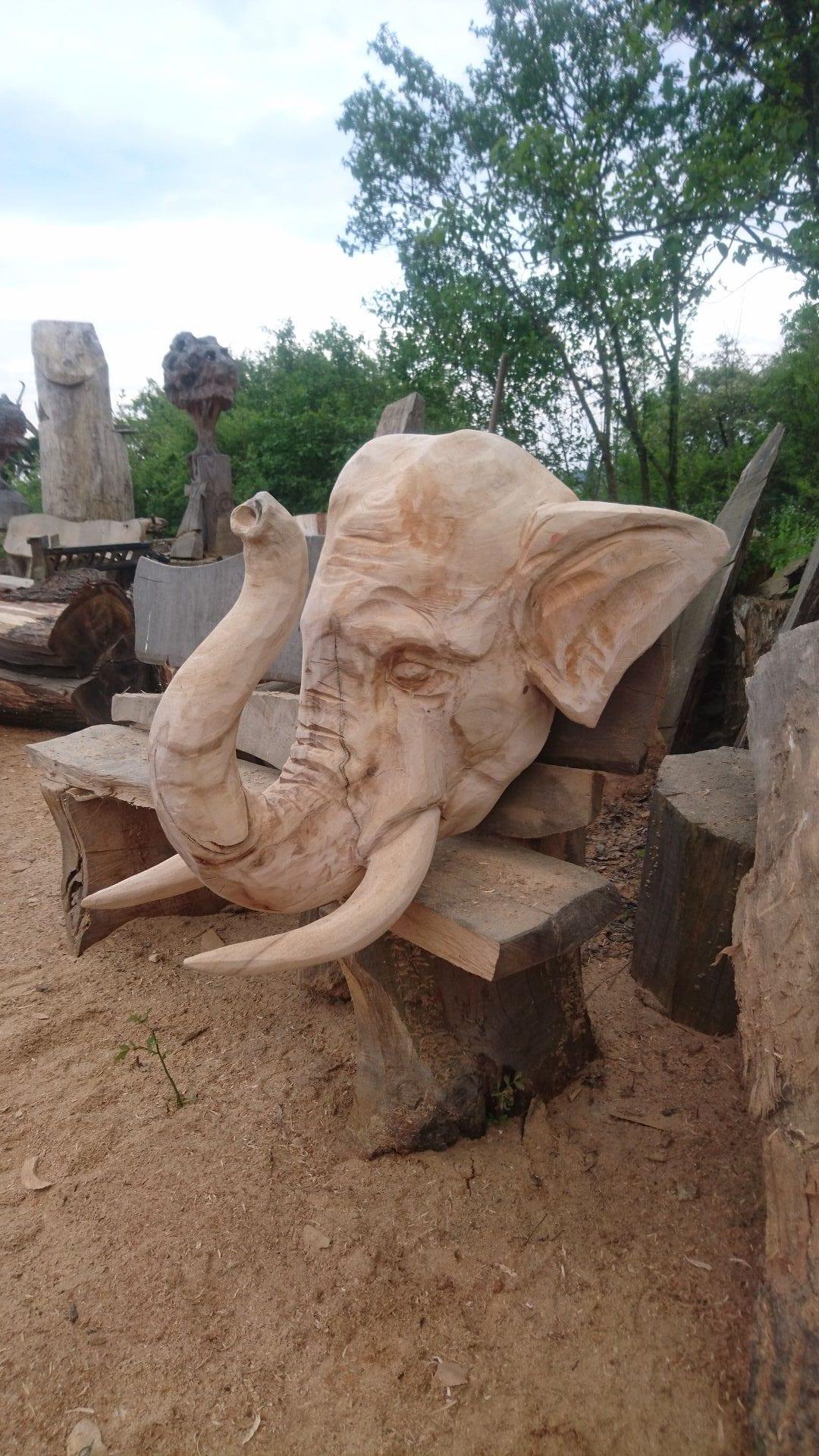 (2) Elefantenschädel